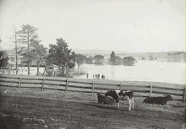 The Camden Flood plain. From Oxley Street on site of Camden Public School. Showing flood water over Showgrounds. Copyright: Camden Historical Society.