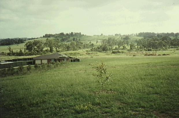 From Currans Hill Park looking north. 1998. Copyright: Camden Historical Society.