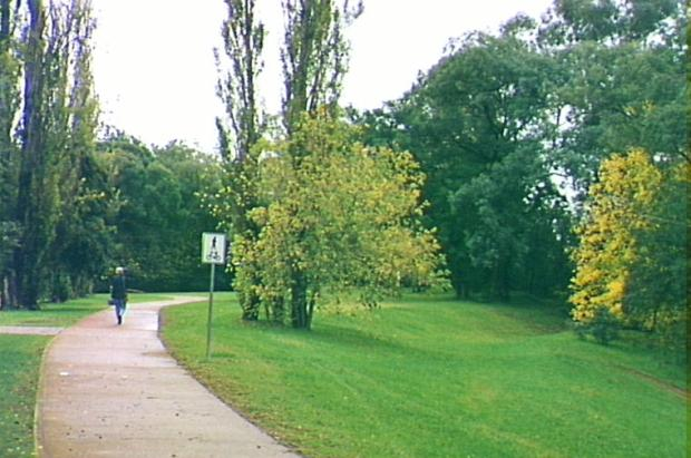 Bicycle track, Camden South, 1998. Copyright: Camden Historical Society.